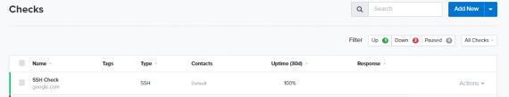 Uptime.com Screenshot SSH check on dashboard